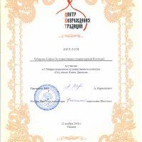 Чубарова Софья