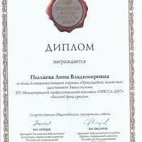 диплом 2007