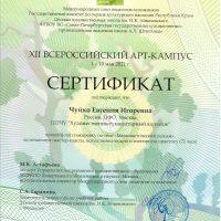 Сертификат Чуйко